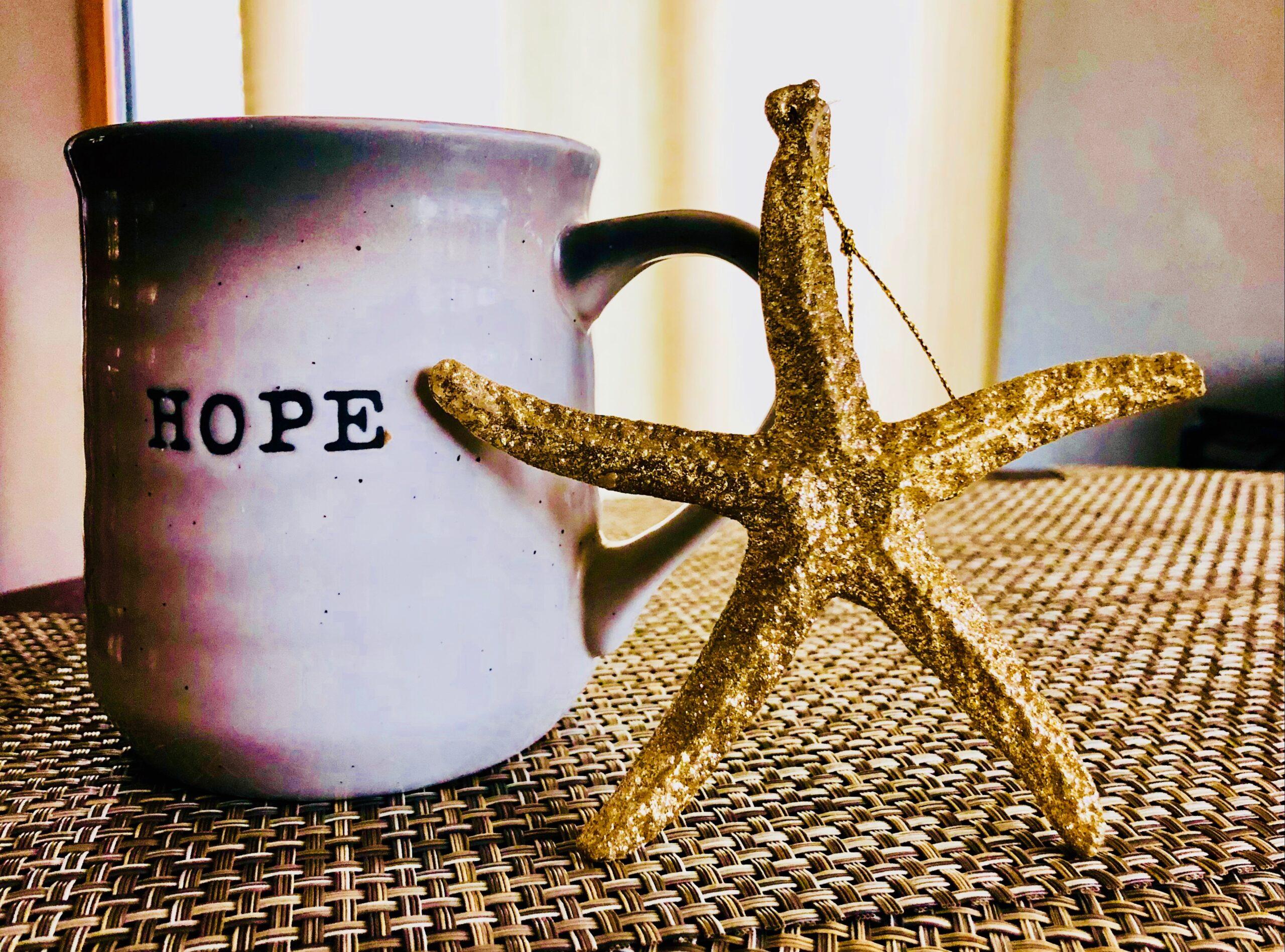 starfish & hope cup